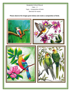 Art (Class V) Composition of birds (revision for exam)